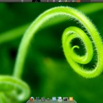 Ubuntu_10.10_Core_Duo